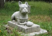 В Кировской области хотят открыть кладбище домашних животных