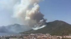 Лесной пожар в Турции спалил более ста гектаров леса у популярного курорта