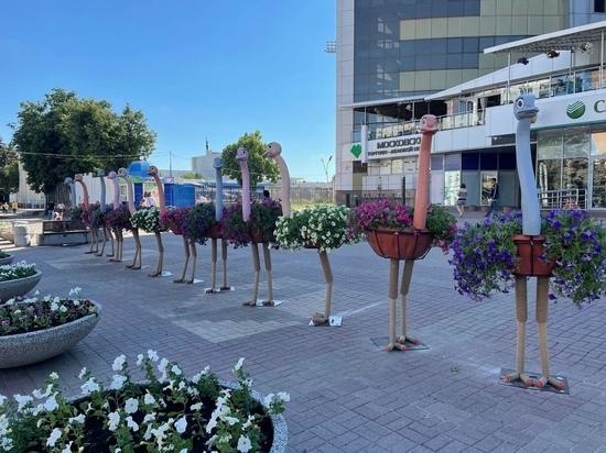 Мэр Курска Карамышев прокомментировал озеленение города и цветочных страусов