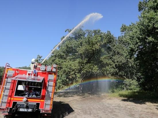 В Волгоградской области до 19 июля продлен запрет на посещение лесов