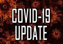 30 июня: в Германии 808 новых случаев заражения Covid-19, 56 умерших за сутки