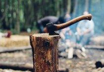 Глава Бурятии считает новые требования в части рубки леса избыточными