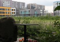 Дольщики, которые приобрели квартиры в новом жилом комплексе в Приморском районе города, пожалели о своем выборе и уже, кажется, готовы вернуть застройщику ключи. Их пугает перспектива соседства с теми, кто еще только найдет свой покой на расположенном под окнами Серафимовском кладбище. Новоселы, которые вкладывались в строительство ЖК, были уверены в том, что некрополь расширяться не будет. Но не тут-то было.