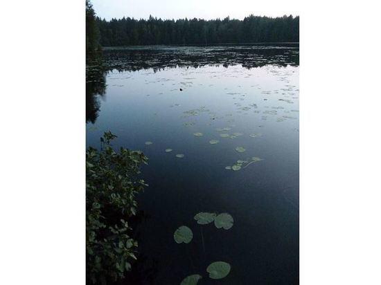 Вечером 1 июля в водоемах Марий Эл нашли четырех утонувших мужчин