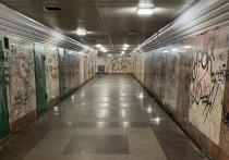 Шапша предложил превратить подземный переход Калуги в арт-объект