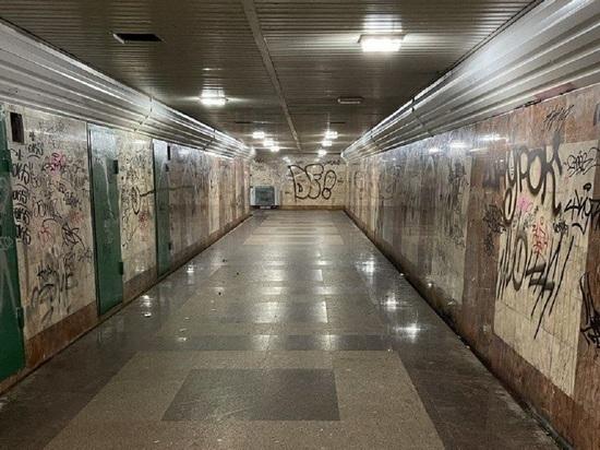Калужане поддержали Шапшу с планами отдать подземный переход под творчество