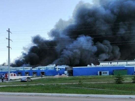 Крупный пожар потушили на бийской птицефабрике
