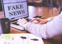 Советники Санду готовят законопроект о борьбе с дезинформацией