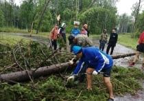 Пострадавшим от урагана великолучанам частично компенсируют ремонт