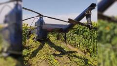 СК опубликовал видео с вертолетом, рухнувшим на подсолнухи в Кабардино-Балкарии