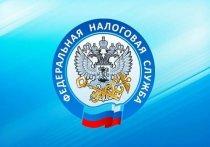 Жители Серпухова могут обратиться в налоговую инспекцию дистанционно