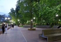 На спорте и не только: пять парков, которые появятся в Пскове
