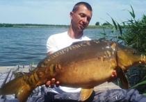 Карпа весом 8 кг поймали в одном из водоёмов Краснодарского края