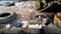 Астраханцы захламили мусорные контейнеры сухими ветками