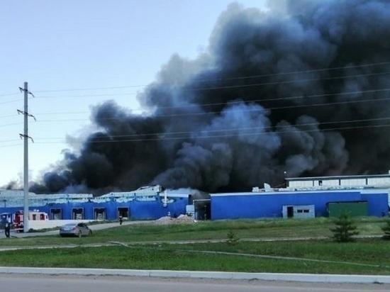 Сотрудникам сгоревшего алтайского предприятия предложили временную работу