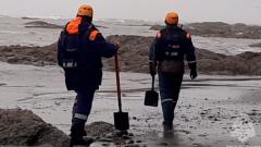 МЧС ведет поиски погибших с самолета, разбившегося на Камчатке: видео