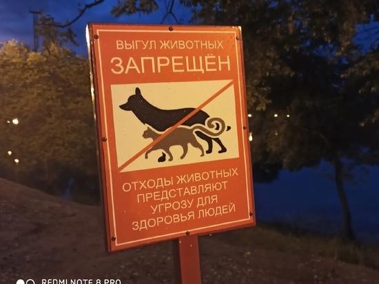 Администрации столицы Хакасии сообщает о строительстве площадки для выгула и дрессировки собак в Парке культуры и отдыха, однако горожане сообщают о странных аншлагах, которые запрещают там гулять с собаками