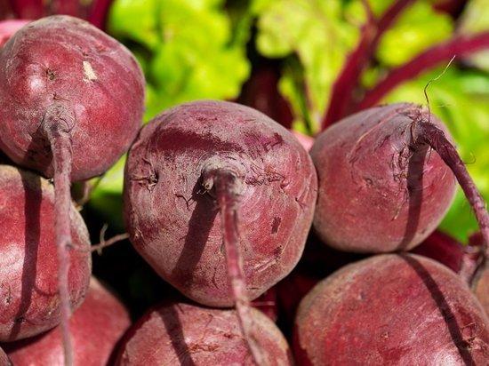 Июль является важным посевным месяцем для садоводов, солнечную погоду надо использовать для урожая овощей, сообщается в публикации на сайте Express