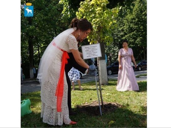 В День семьи, любви и верности молодожены посадили дерево в Йошкар-Оле