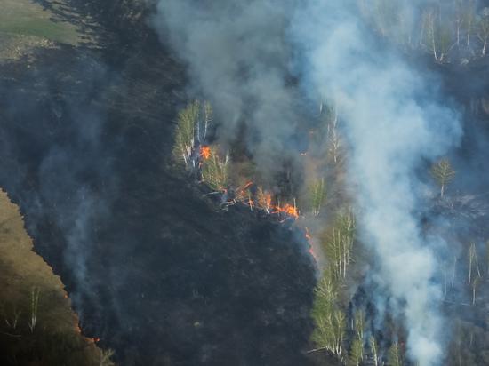 В Карталинском районе Челябинской области введен режим ЧС из-за лесных пожаров