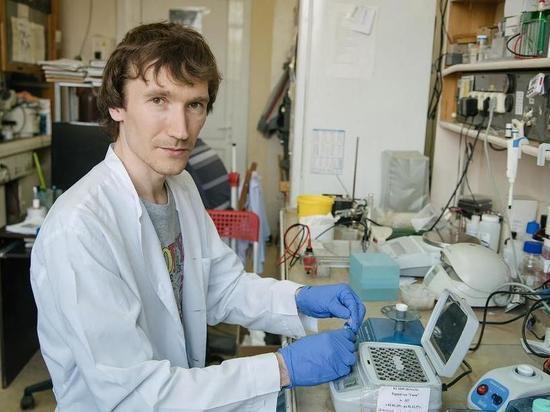 Ученый из Новосибирска прокомментировал заявление, что COVID-19 научился обходить антитела
