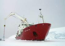 Украина решила возродить освоение Антарктиды и Арктики, а заодно и укрепить свои военно-морские силы с помощью создания  «москитного флота»