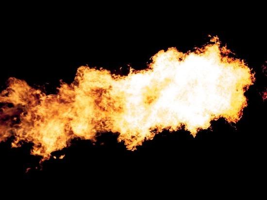 В одном из районов Челябинской области ввели режим ЧС из-за лесных пожаров