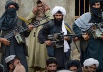 Политолог предрек России войну в Средней Азии из-за усиления «Талибана»