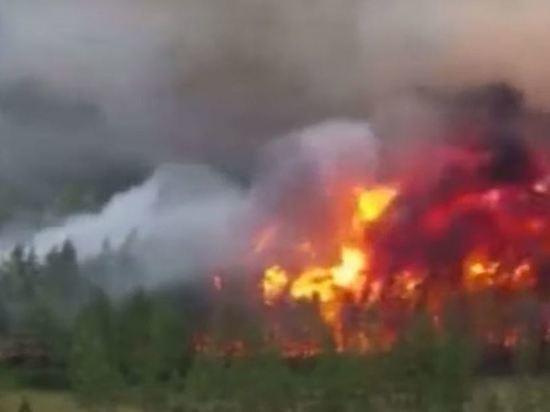 В Челябинской области загорелся от лесного пожара второй поселок