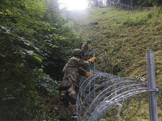 На белорусско-литовской границе задержаны сотни нелегалов