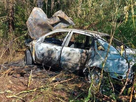 В Марий Эл автомобиль врезался в дерево и сгорел