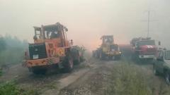В Тольятти охвачено огнем около 100 гектаров пригородного леса