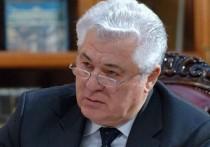 Владимир Воронин проголосовал за независимую и процветающую страну