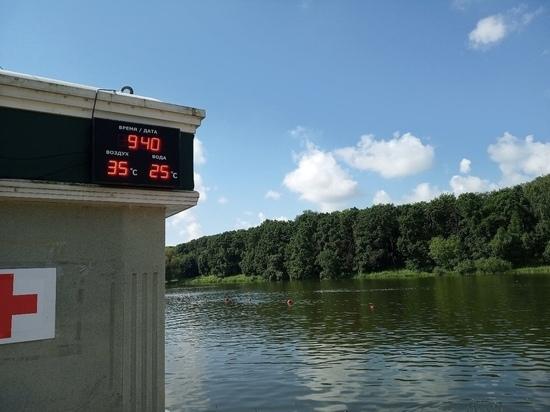 В Тульской области объявили желтый уровень погодной опасности из-за сильной жары