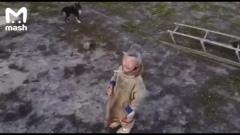 Оленевод в ЯНАО сбил залетевший в тундру квадрокоптер
