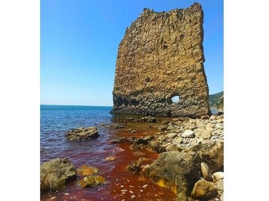 Море возле скалы Парус под Геленджиком приобрело кровавый оттенок