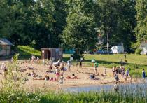 До +34 градусов прогреется воздух в Псковской области 13 июля