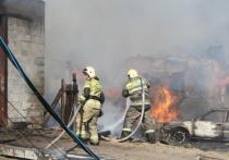 В Омской области сгоревшую деревню Каракуль планируют восстановить к 1 сентября