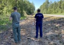 Возбуждено уголовное дело по факту гибели пенсионера в результате ДТП под Псковом