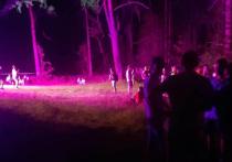 Дискотека на открытом воздухе в Пскове сорвалась после приезда полиции