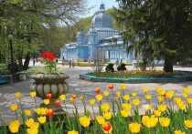 Филиал училища Олимпийского резерва появится в Железноводске