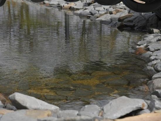 В Центраьном парке продолжаются преобразования, сейчас работники парка обустраивают новый декоративный пруд