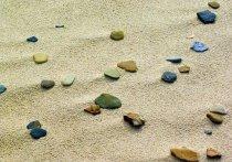 В Тюмени застройщик провел благоустройство пляжа
