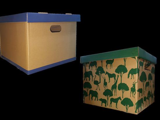 Германия: Эксперты назвали лучшие коробки для переезда