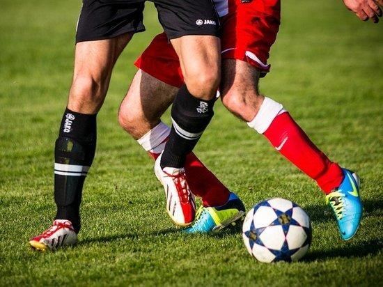 Милонов предложил формировать состав сборной России по футболу из непрофессиональных команд и лиг