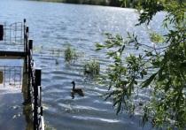 Чиновники и бизнесмены наведут порядок у водоемов в Салехарде