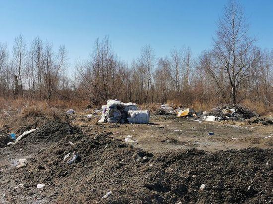 Омские коммунальщики продолжили ликвидировать несанкционированные свалки