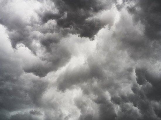 В Курской области 16 июля пройдут ливни с грозами