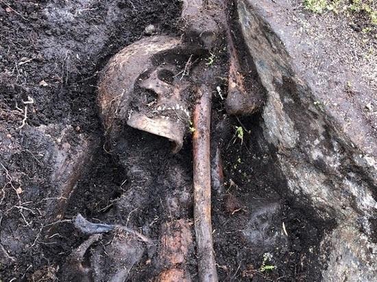 Поисковики Мурманской области обнаружили останки защитников Советского Заполярья