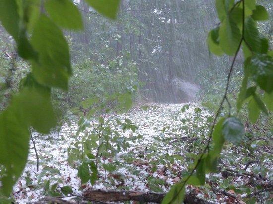 В Нижегородской области ожидаются грозы